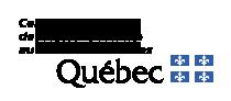 École Adrien-Guillaume
